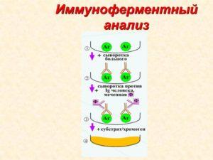 Как называется анализ крови на паразитов