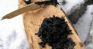 Березовый деготь - применение для очищения организма